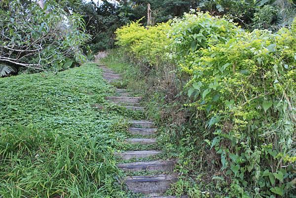1123溪州山登山步道 (7).JPG