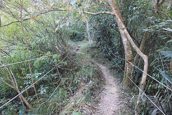 1123溪州山登山步道 (9).JPG