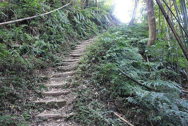 1123溪州山登山步道 (10).JPG