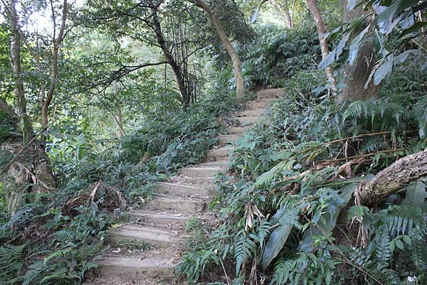 1123溪州山登山步道 (12).JPG