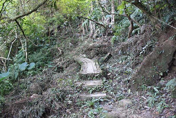 1123溪州山登山步道 (19).JPG