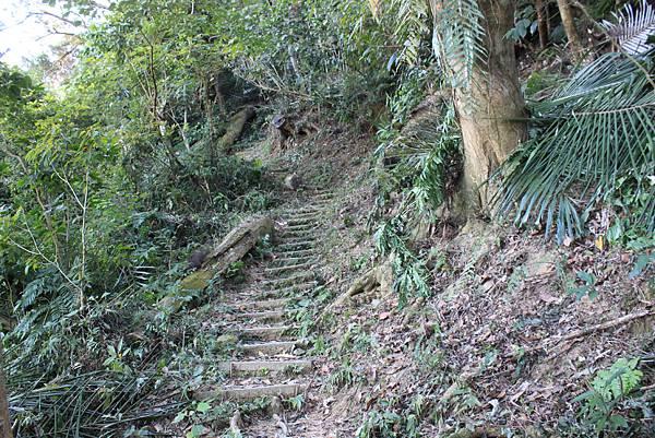 1123溪州山登山步道 (20).JPG