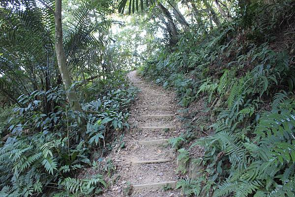 1123溪州山登山步道 (21).JPG