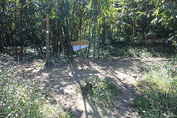 1123溪州山登山步道 (24).JPG