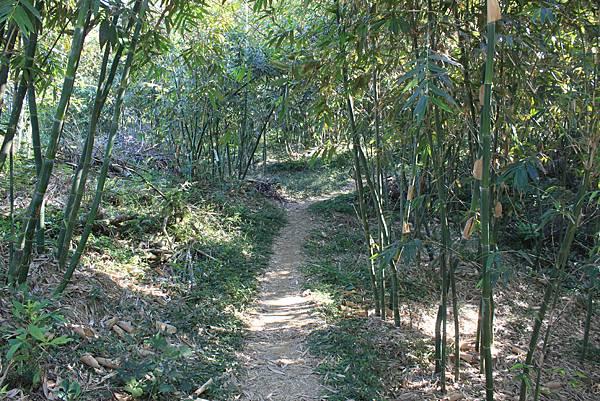 1123溪州山登山步道 (25).JPG