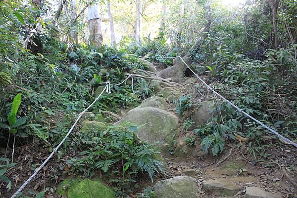 1123溪州山登山步道 (30).JPG