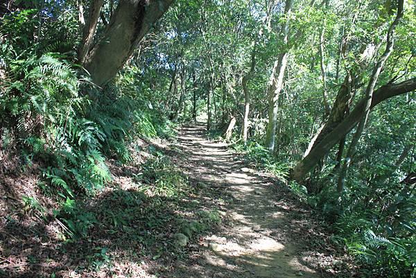 1123溪州山登山步道 (36).JPG