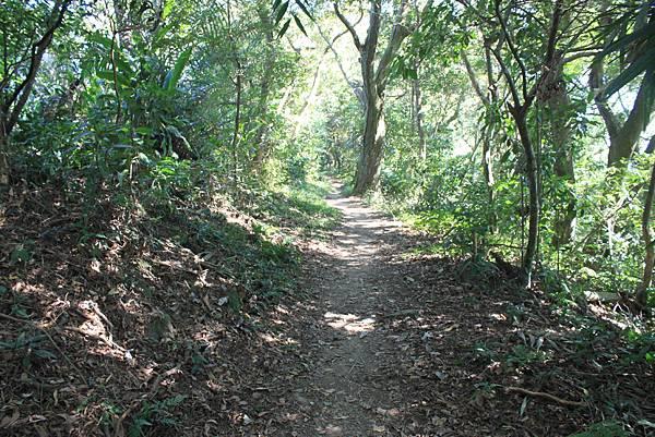 1123溪州山登山步道 (38).JPG