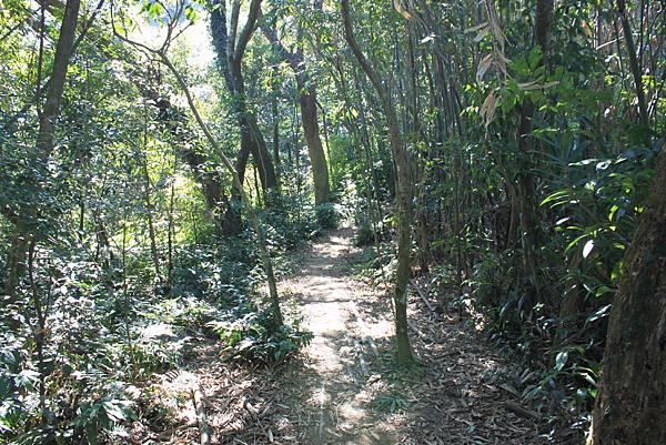 1123溪州山登山步道 (44).JPG