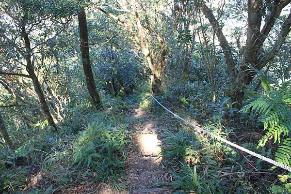1123溪州山登山步道 (49).JPG