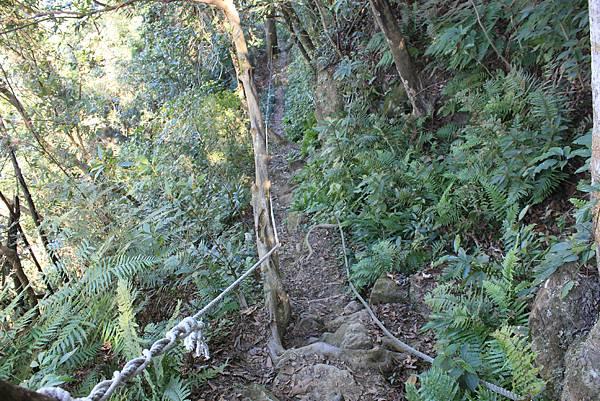 1123溪州山登山步道 (50).JPG