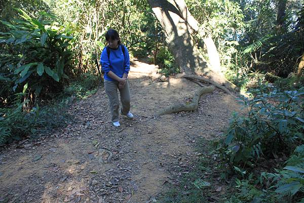 1123溪州山登山步道 (54).JPG