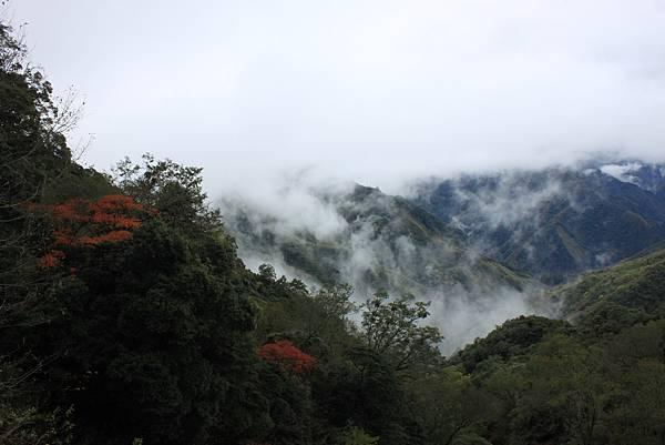 1214李棟山古寶那羅文學屋 (1).JPG
