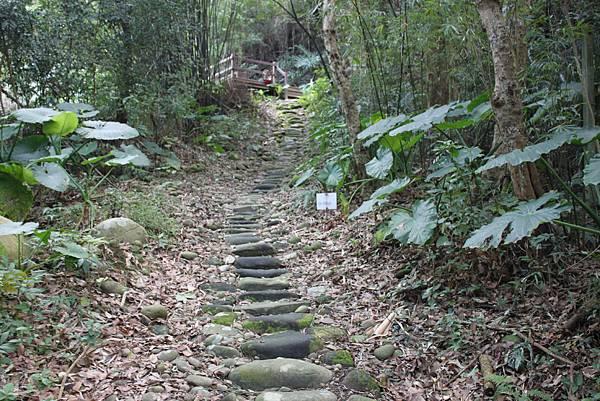 1227新竹關西鎮石光古道 (12).JPG