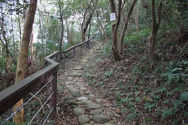1227新竹關西鎮石光古道 (13).JPG