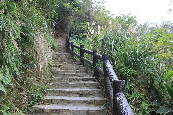 1227新竹新埔鎮九芎湖九湖步道 (6).JPG