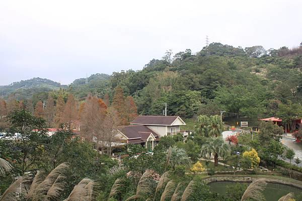 1227新竹新埔鎮九芎湖九湖步道 (7).JPG