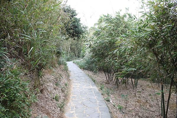 1227新竹新埔鎮九芎湖九湖步道 (14).JPG