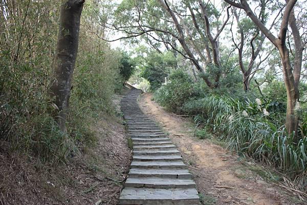 1227新竹新埔鎮九芎湖九湖步道 (16).JPG