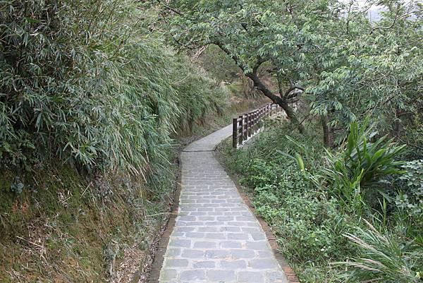 1227新竹新埔鎮九芎湖九湖步道 (20).JPG
