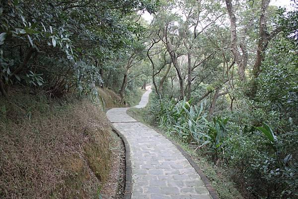 1227新竹新埔鎮九芎湖九湖步道 (21).JPG