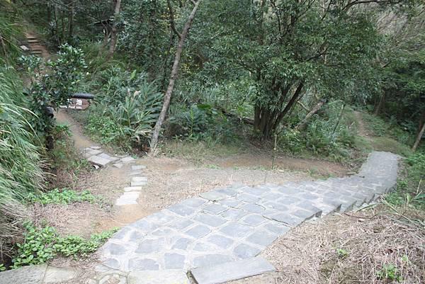 1227新竹新埔鎮九芎湖九湖步道 (23).JPG