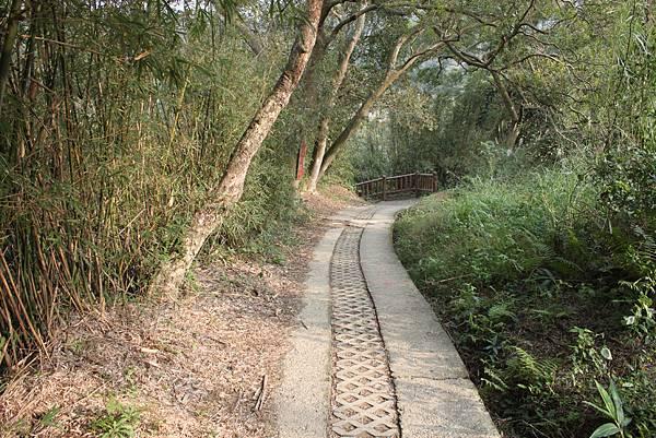 1227新竹新埔鎮九芎湖九湖步道 (25).JPG