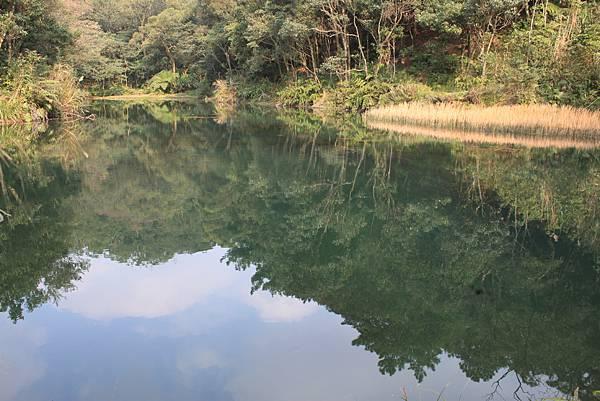 0105汐止科子林山 (13).JPG