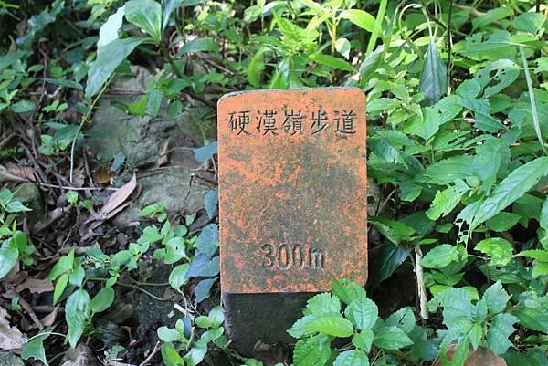 0119觀音山硬漢嶺 (7).JPG