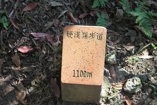 0203觀音山硬漢嶺 (21).JPG