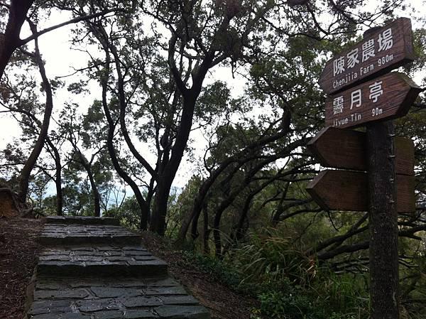 0208九芎湖步道 (10).JPG