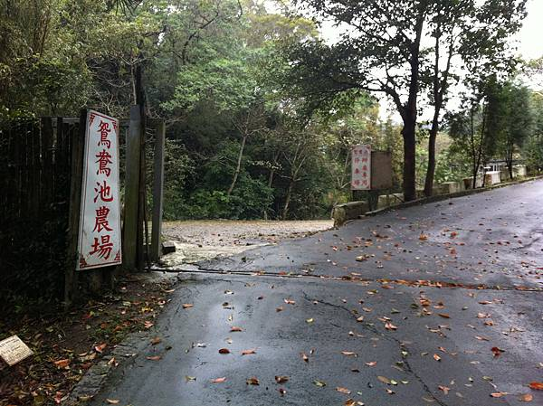 0208九芎湖步道 (26).JPG