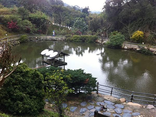 0208九芎湖步道 (29).JPG