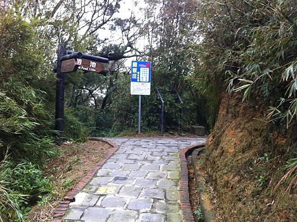 0208九芎湖步道 (37).JPG