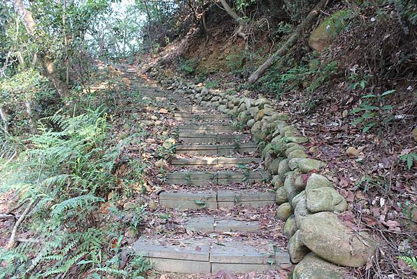 0228三義三角山 (13).JPG