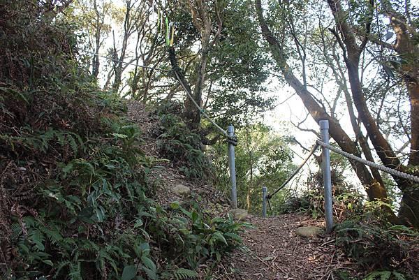 0228三義三角山 (26).JPG