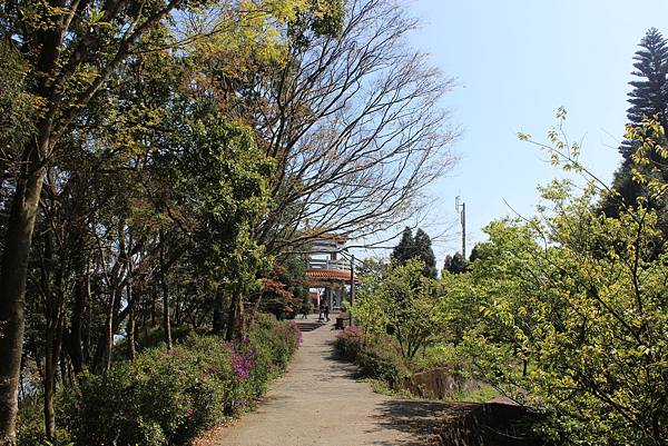 0228雲洞山莊出關古道東段 (9).JPG