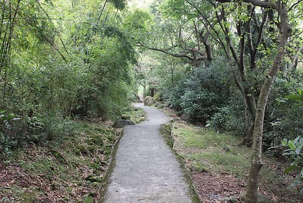 0316忠義山、小坪頂 (9).JPG