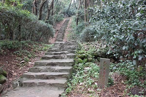 0316忠義山、小坪頂 (11).JPG