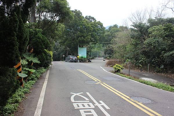 0316忠義山、小坪頂 (29).JPG
