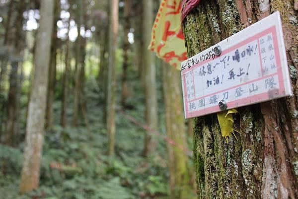 0322金平山、小烏來 (18).JPG
