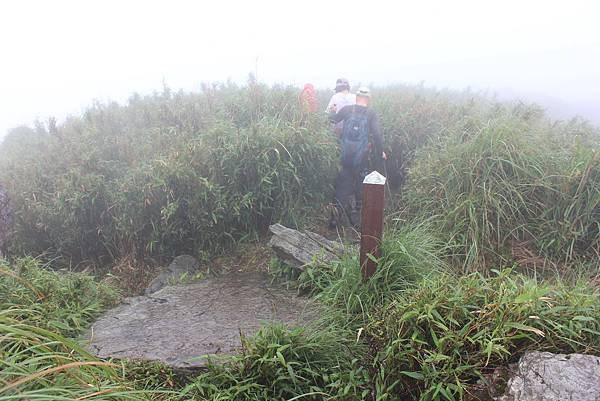 0420小觀音山西峰 (44).JPG