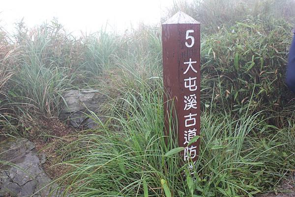0420小觀音山西峰 (45).JPG