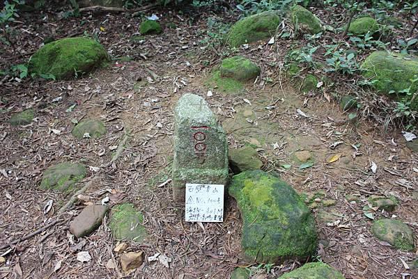 0504飛鳳山 (23).JPG