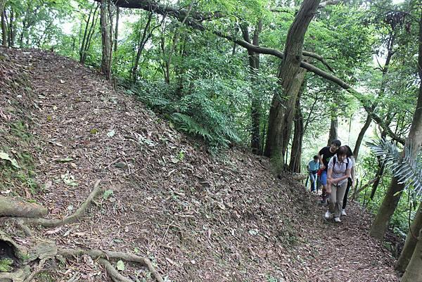 IMG_0518三峽麒麟山 (13).JPG
