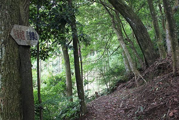 IMG_0518三峽麒麟山 (14).JPG