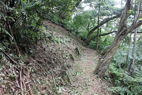 IMG_0518三峽麒麟山 (24).JPG