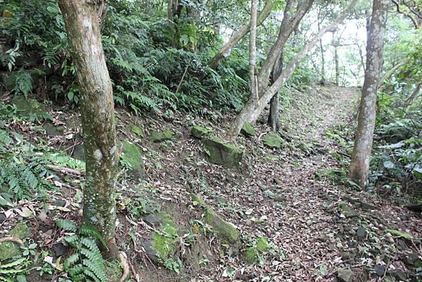 IMG_0518三峽麒麟山 (25).JPG