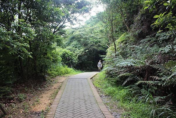 0525獅頭山翠山步道碧溪步道及大崙尾山 (5).JPG