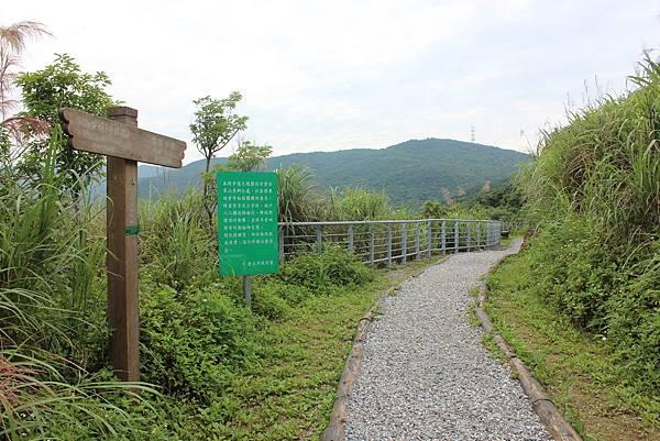 0525獅頭山翠山步道碧溪步道及大崙尾山 (7).JPG
